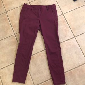 Berry ankle chinos from Loft Outlet - size 4
